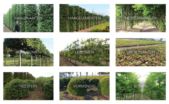 Urban Trees - 3. De Methodiek